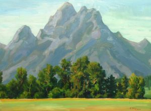group-d-teton-clearing