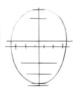 drawing the portrait. Dividing the egg shape.